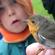 Læs mere om: Oplev ringmærkning af fugle