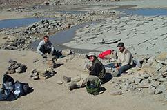 Fossilerne blev systematisk indsamlet gennem 150 kalk- og mergellag. Foto: David Harper.