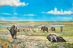 Et sted i Danmark for mellem 45.000 og 25.000 år siden. Mellem Weichsel. Isranden ligger nogle hundrede kilometer længere mod nord og øst, og den nordeuropæiske mammutsteppe har bredt sig over det danske område. Akvarel af Carl Christian Tofte.