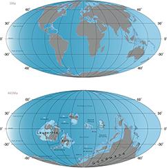 Kontinenterne havde en vidt forskellig udbredelse i Sen Ordovicium i forhold til under den seneste istid, kloden har gennemlevet. Det var en af hovedårsagerne til, at klimafølsomme arter havde meget sværere ved at finde egnede leveområder i takt med det hurtige klimaskifte sidst i Ordovicium.
