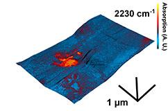 3D-billede som viser en del af en åben inklusion. Billedet viser de mikrometer store organiske rester (rød) fanget i ædelsten (blå). Foto: Tue Hassenkam.