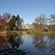 Læs mere om: Botanisk Have certificeret efter international standard
