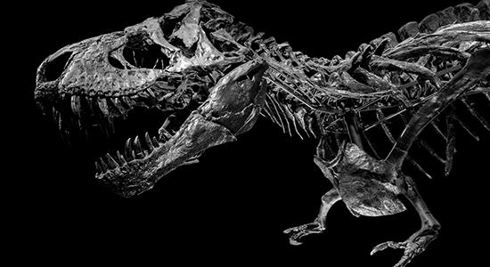 Dinosaurernes konge