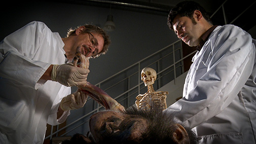 image of science communicators disecting an animal