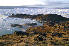 The ancient perma frozen settlement Qajaa located in the Illulisat icefjord, Disko bay, West Greenland. Copyright and credits: Maanasa Raghavan (maanasa.raghavan@gmail.com) Department of Zoology, University of Cambridge, Cambridge CB2 3EJ, UK.