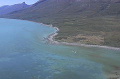 The large Norse churchfarm Sandnes (centre of photo) located at the head of the Ameralik fjord. Copyright and credits: Mikkel Winther Pedersen (mwpedersen@snm.ku.dk), Centre for GeoGenetics, Natural History Museum of Denmark, University of Copenhagen.