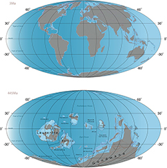 The configuration of the continents were markedly different during the Late Ordovician ice age than during the latest Quaternary ice age. This was one of the main reasons why climate sensitive species were more likely to go extinct during the Late Ordovician ice age than during the Quaternary ice age.
