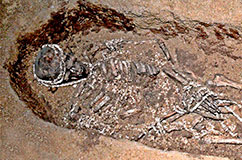 Detail of one of the burials from Sunghir, in Russia. The new study sequenced the genomes of individuals from the site and discovered that they were, at most, second cousins, indicating that they had developed sexual partnerships beyond their immediate social and family group.